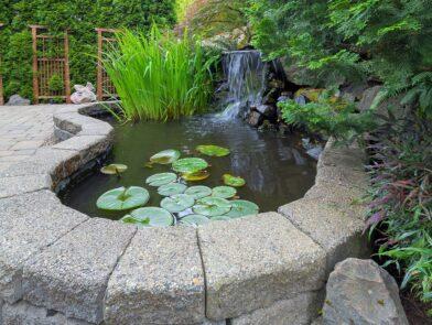 pond-installation allen