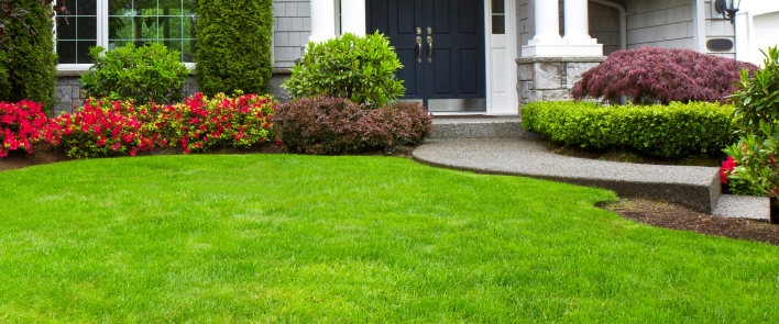 flower planting and yard maintenance