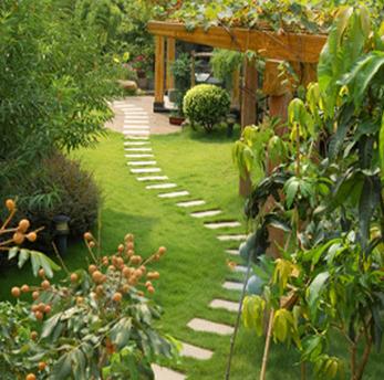 allen tx landscaping services