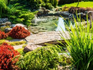 landscape with water feature