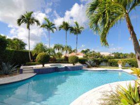 pool deck landscaping allen